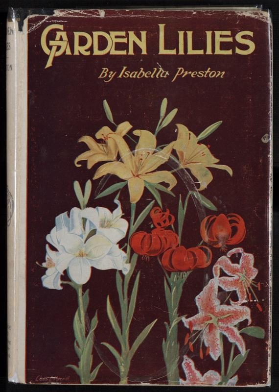 Garden Lilies.