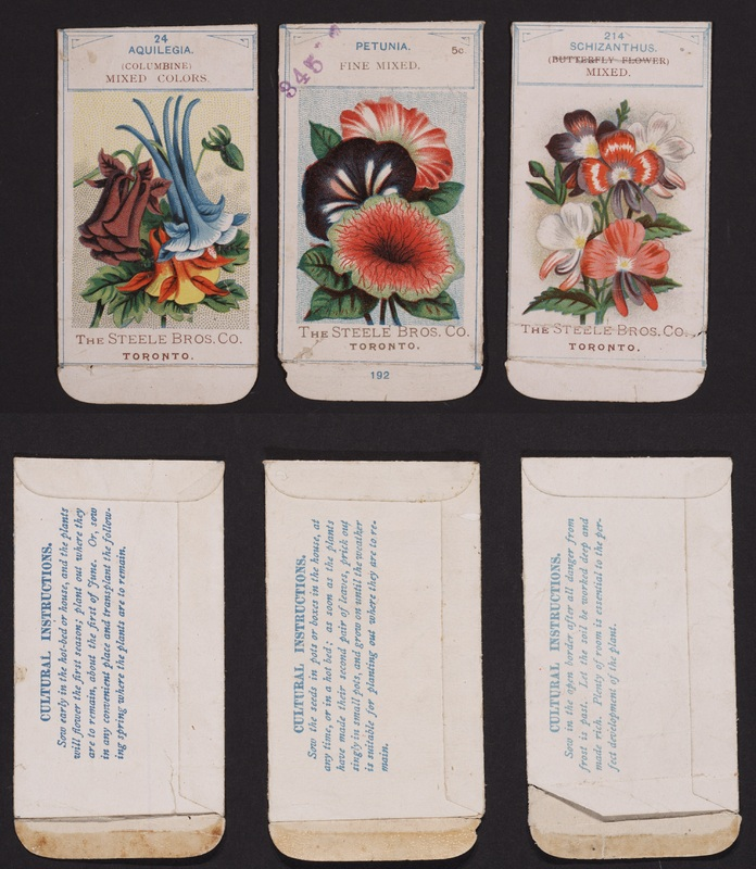 [Steele, Briggs seed packets and 1907 catalog]
