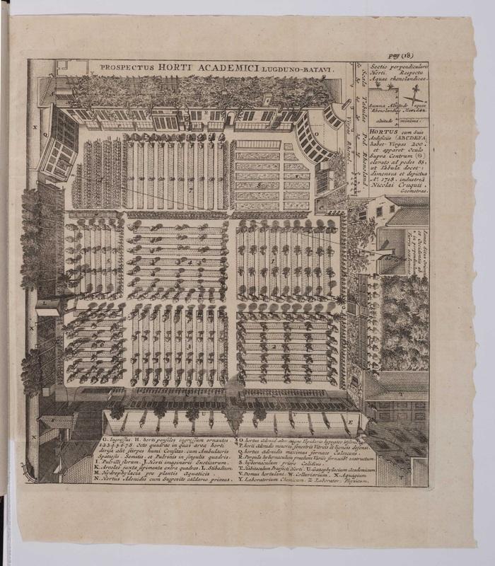 Index alter plantarum quae in horto academico Lugduno-Batavo aluntur.